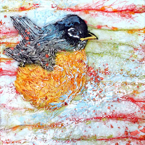 Sugared Robin | Col Mitchell Contemporary Paper Artist
