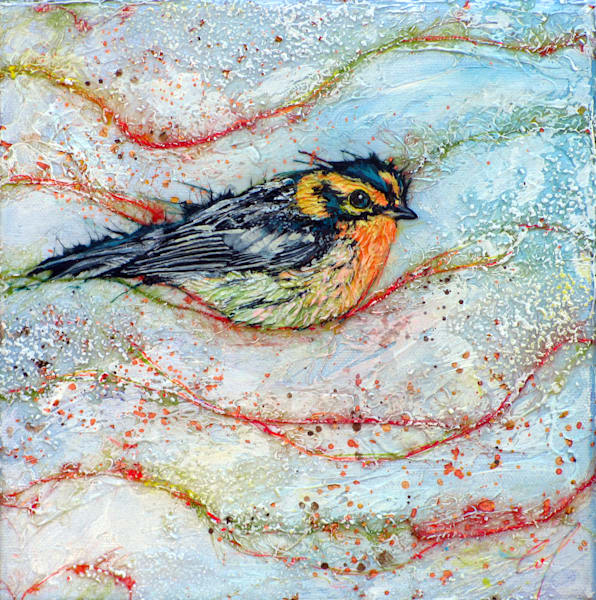 Candied Warbler, Bernian I | Col Mitchell Contemporary Paper Artist