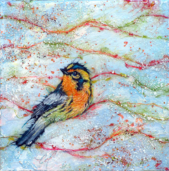 Candied Warbler, Bernian II | Col Mitchell Contemporary Paper Artist