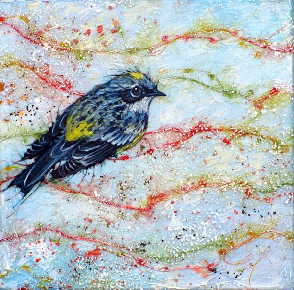 Candied Warbler, Mrytle I | Col Mitchell Contemporary Paper Artist
