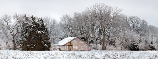 Panoramas: Contemplation, a color fine art photograph of a rustic outbuilding in eastern Kansas by David Zlotky
