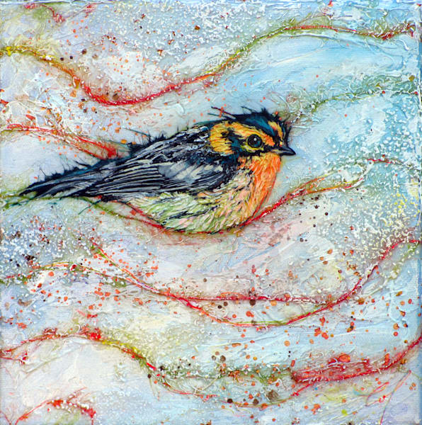 Bernian, Candied Warbler   Col Mitchell Contemporary Paper Artist