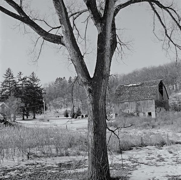 Sentinel   Minnesota Photography Art | Namaste Photography