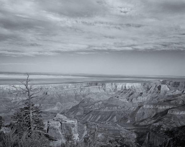 Sole Survivor   Arizona Photography Art | Namaste Photography