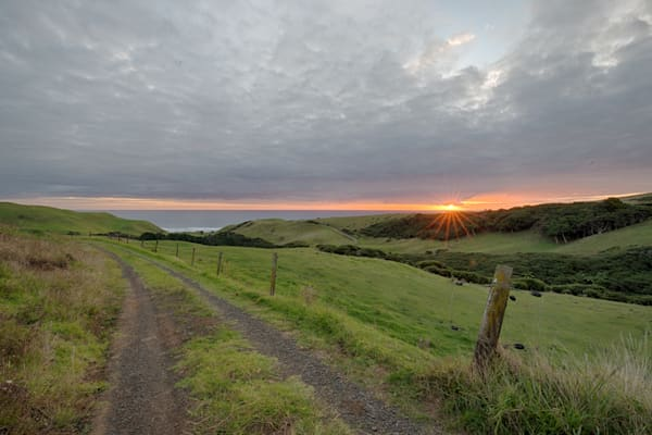 Ruapuke New Zealand Sunset