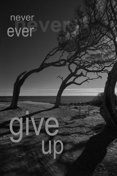 Never Ever Give Up Photography Art | Robert Jones Photography