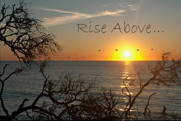 Rise Above... Photography Art | Robert Jones Photography