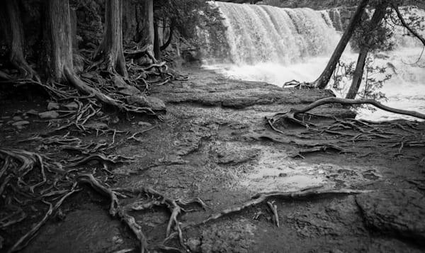Bones Of The Earth   Minnesota Photography Art | Namaste Photography