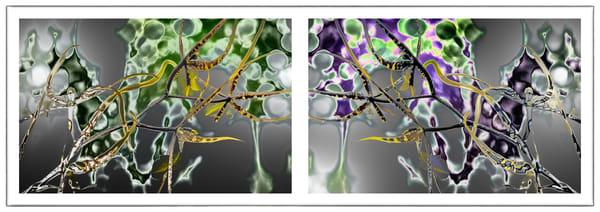 Baguette Chrome Tourmaline  |  Spider Orchids