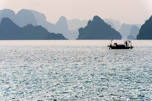 A Fish Boat in Ha Long Bay