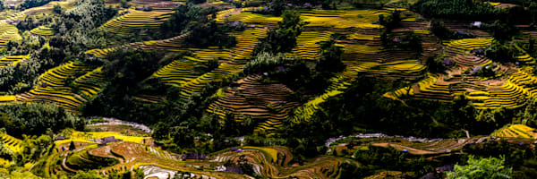 Terraced rice fields in Ha Giang Panorama