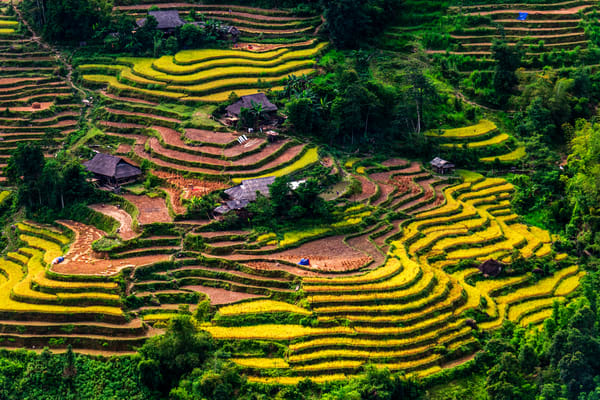 Village in Ha Giang Terraced Rice Fields