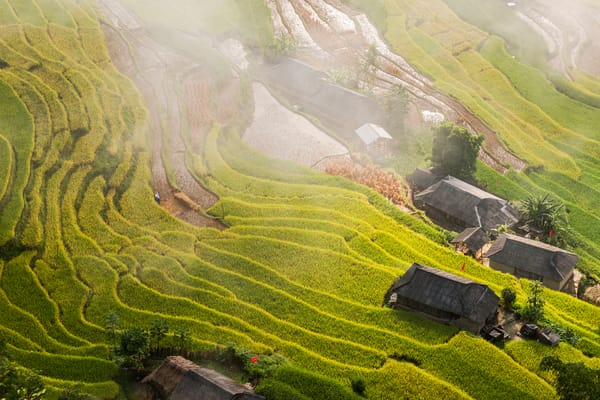 Morning Mist in Ha Giang Terraced Rice Fields