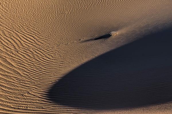 Terra Incognita Xxxv Photography Art | Will Nourse Photography