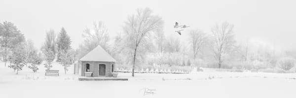 Snow Scene with Flying Geese