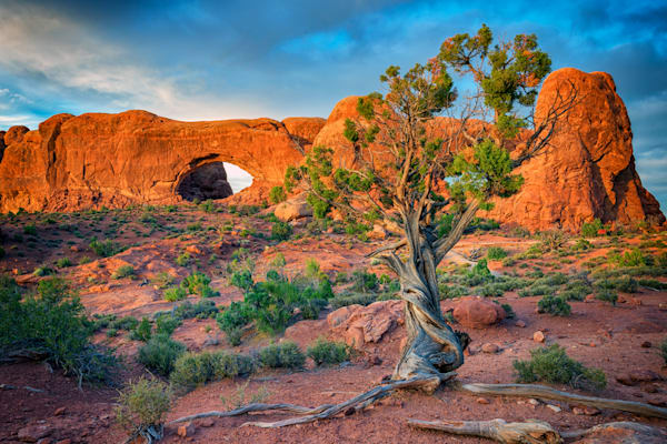 The Windows of Arches National Park | Shop Photography by Rick Berk
