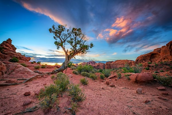 The Desert at Dusk by Rick Berk