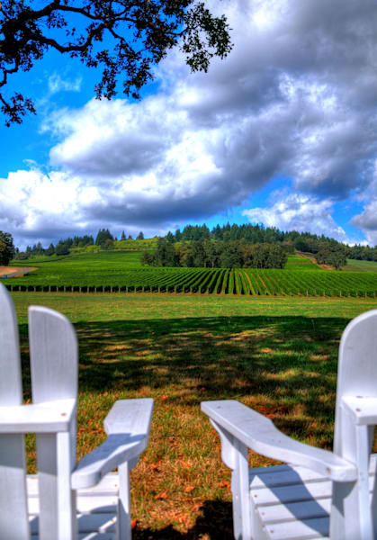 Two Chairs In The Vineyard