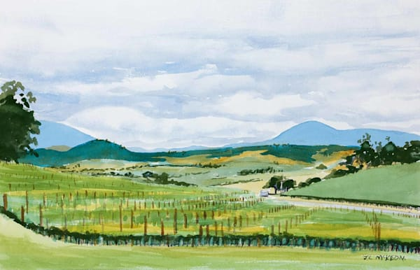 Yarra Valley hills from Balgownie Estate,