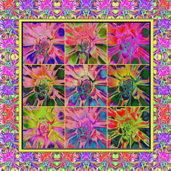 Succulent Quilt print of photograph transformed into digital art for sale by Maureen Wilks