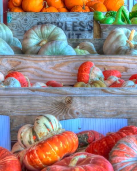 gourds-of-autumn