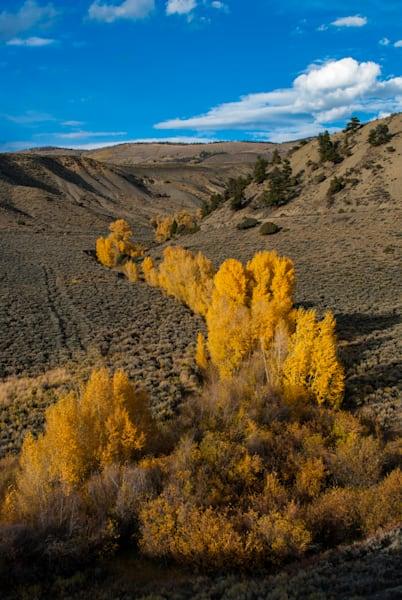 Green Mountain Autumn Art | Brandon Hirt Photo