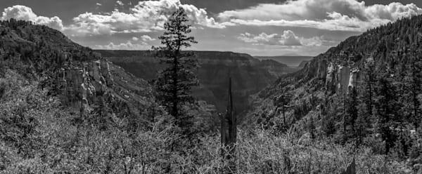 North Rim Grand Canyon Pano Art | Brandon Hirt Photo
