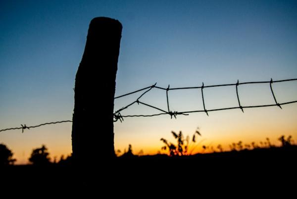 Homestead Fence Art | Brandon Hirt Photo