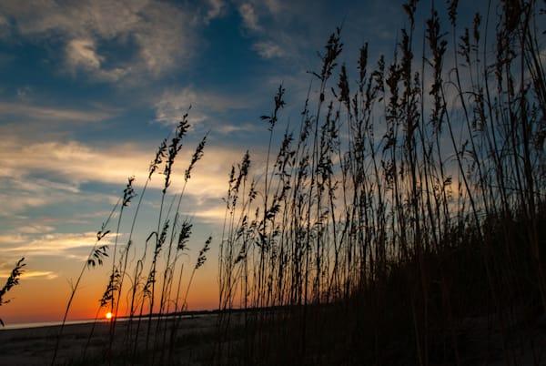 Seagrass Sunset Art   Brandon Hirt Photo