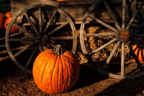 Pumpkin Wheel Art | Brandon Hirt Photo