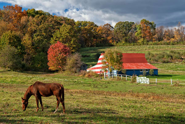 Horse Barn Art | Brandon Hirt Photo