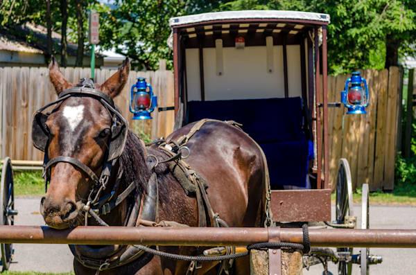 Amish Buggy Art | Brandon Hirt Photo