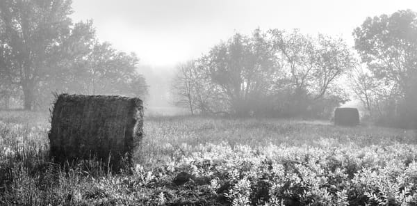 Americana fine art black and white photographs: Hay Bales in Autumn Fog, by fine art photograper, David Zlotky.