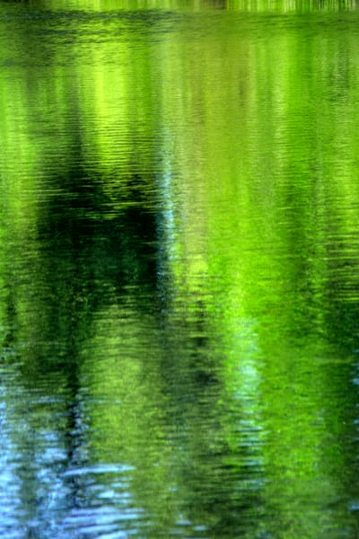 Yamhill River Abstract