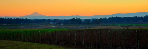 Sunrise Mt. Hood Wine Country