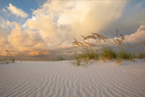 Florida's Gulf Islands National Seashore Fine Art Photographs - Fine Art Prints on Canvas, Paper, Metal, & More | Waldorff Photography