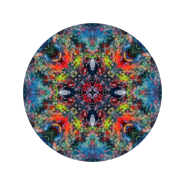 Red Star Coral M1 - Modern Mandala | A Psychedelic Art Project by Cameron Emmanuel