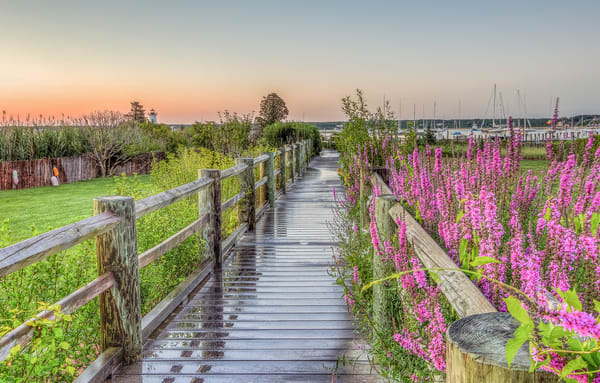Edgartown Light Wakway Flowers Art | Michael Blanchard Inspirational Photography - Crossroads Gallery