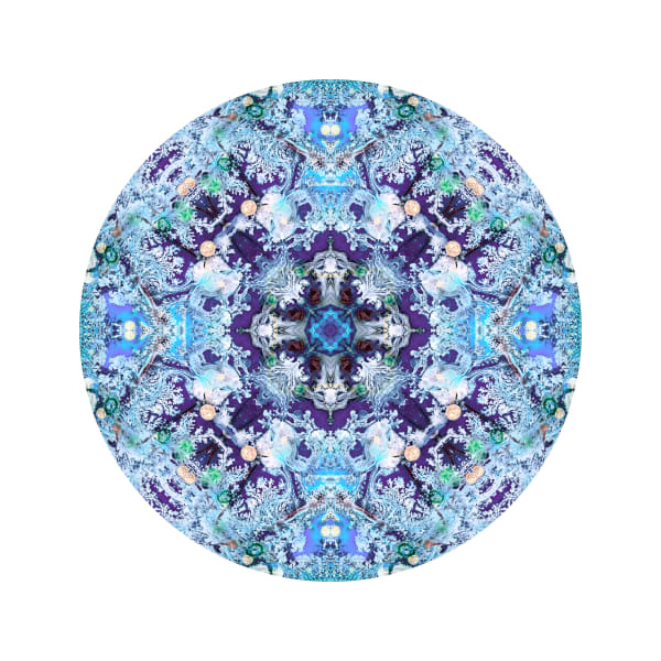Perma Frost M4 - Modern Mandala | A Psychedelic Art Project by Cameron Emmanuel