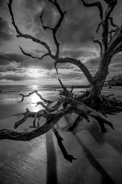Black & White Photographs for Sale as Fine Art