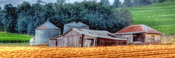 Shed and Grain Bins