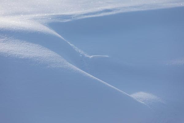 Soft Contours of wind-blown snow - shop prints | Closer Views