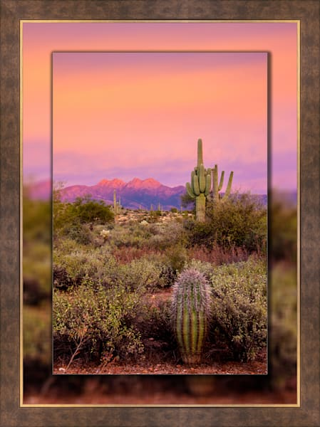 Four Peaks Sunset Pink V  3D Bronze Wide