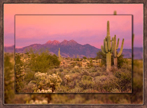 Four Peaks Sunset Pink H 3D Bronze Narrow
