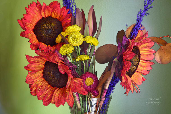 Maggie's Flowers | Wonderful World of Flowers - Art By Smiths