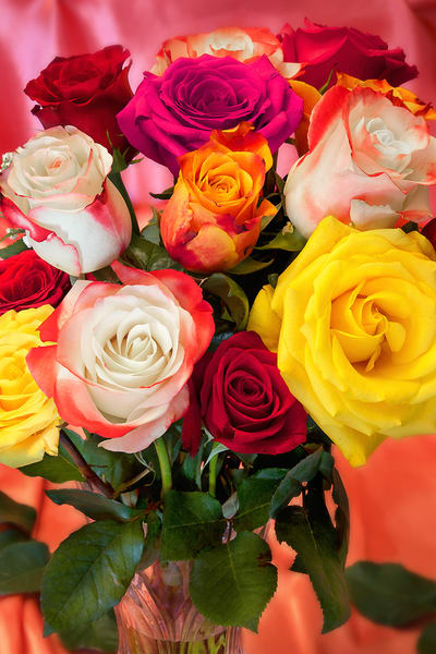 Rainbow of Roses | Wonderful World of Flowers - Art By Smiths