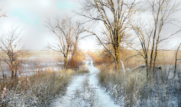 Backroads Collection - color | Dusting of Snow, Christmas Eve Morning - color. Beautiful little hay meadow road in winter. Black and white fine art photograph by David Zlotky.