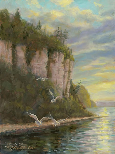 """Ephraim WI, Gulls At Eagle Bluff"" fine art print by Rick Brawner."