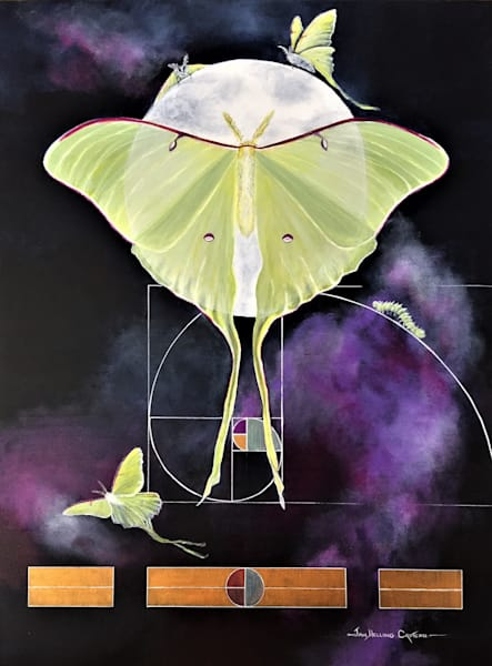 Hope Is A Luna Moth In All Her Glory Art | Jan H Croteau  Art