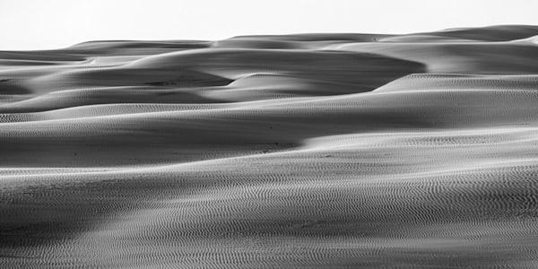 Dune Textures Mono - Stockton Beach Anna Bay NSW Australia